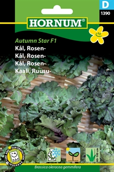Rosenkål - Autumn Star
