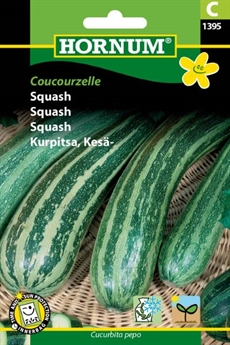 Squash - Coucourzelle