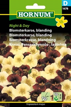 Blomsterkarse - Night & Day