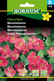 Blomsterkarse - Cherry Rose