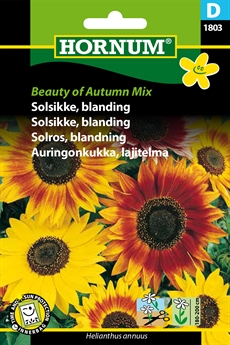 Solsikke - Autumn Mix