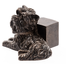Bronze Yorkshire Terrier - 3 stk